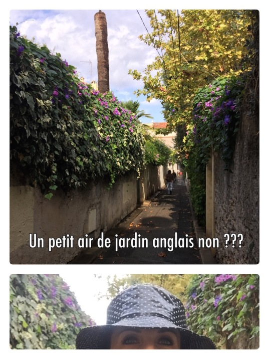 vieil-antibes_jardin-anglais_photo-2